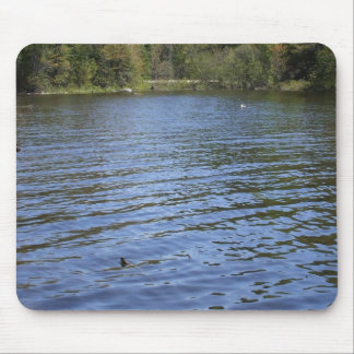 Water Scene Mouse Pad