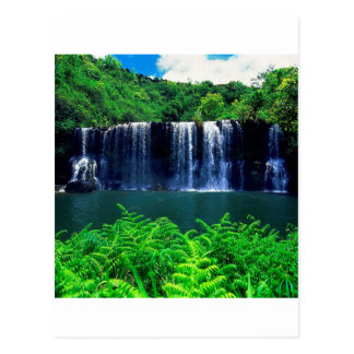 Water Secluded Falls Kauai Postcard