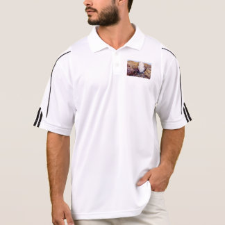 Water shower due to waves polo shirt