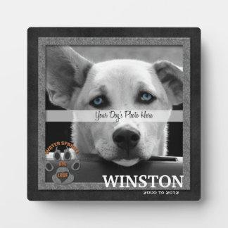 Water Spaniel Dog Breed Memorial Plaque