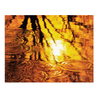 Water surface, close up postcard