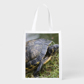 Water Turtle Reusable Grocery Bags