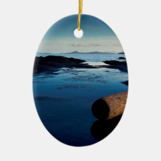 Water Wet Beach Log Ceramic Oval Decoration