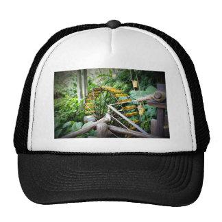 Water Wheel Hat