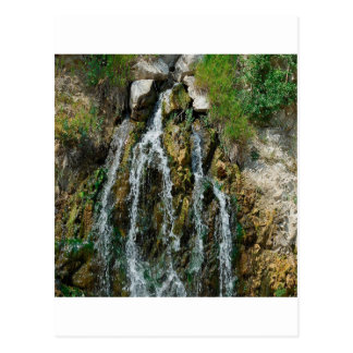 Water Works Rush Post Card