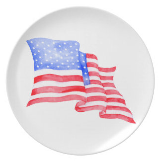 Watercolor American Flag Party Plates