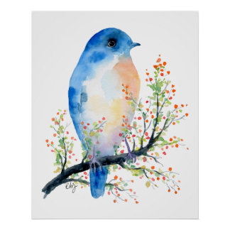 Watercolor Blue Bird on Berry Branch Poster