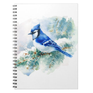 Watercolor Blue Jay Notebook