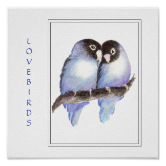 Watercolor Blue Lovebirds -Bird  Print