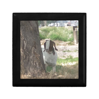 Watercolor Boer Goat Gift Box