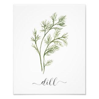 Watercolor Botanical Herb Print Dill Photo