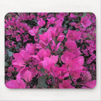 Watercolor Bougainvillea Mouse Pad