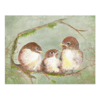 Watercolor Cuddling Sparrow Bird Family Nature Postcard