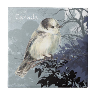 Watercolor Gray, Grey or Canada Jay National Bird Small Square Tile