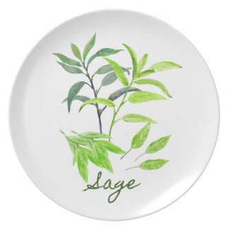 Watercolor herb sage illustration dinner plate