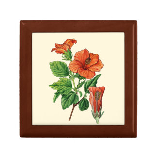 Watercolor Hibiscus Gift Box