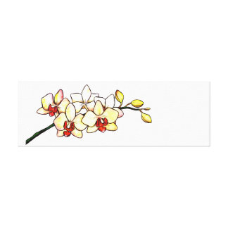 watercolor illustration orchid yellow blossoms canvas print