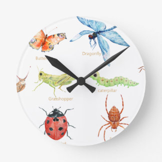 Watercolor insect illustration clocks