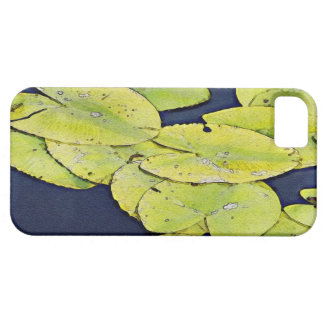 Watercolor Lily Pads iPhone 5 Covers