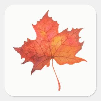 Watercolor Maple Leaf Square Sticker