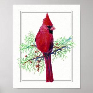 Watercolor  Merry Christmas, Cardinal Red Bird Poster