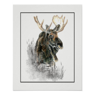 Watercolor Moose Wilderness Animal Poster