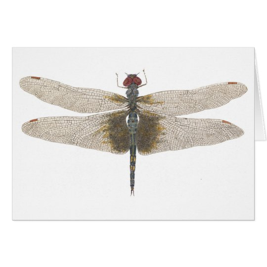 Watercolor of a Male Black Saddlebags Dragonfly Card
