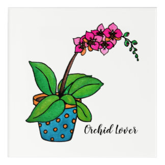 Watercolor Orchid Plant In Beautiful Pot Acrylic Wall Art