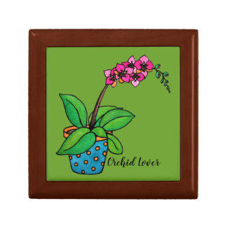 Watercolor Orchid Plant In Beautiful Pot Gift Box