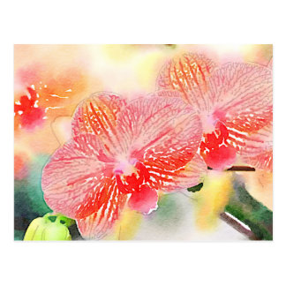 Watercolor Orchids Postcard