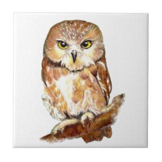 Watercolor  Owl Cute Bird art Ceramic Tile