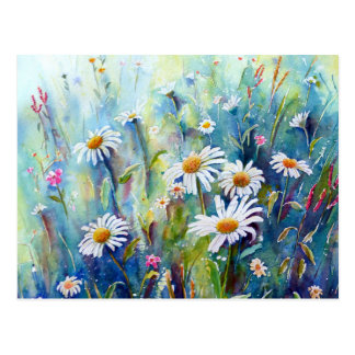 Watercolor painting of daisy field postcard