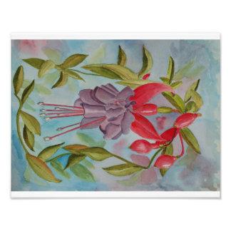 Watercolor painting of Fuschia Flower Art Photo