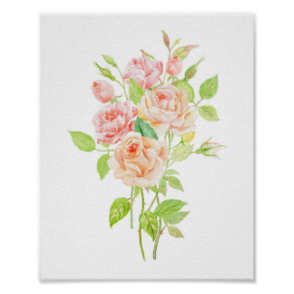 Watercolor Peach Rose Bouquet Poster