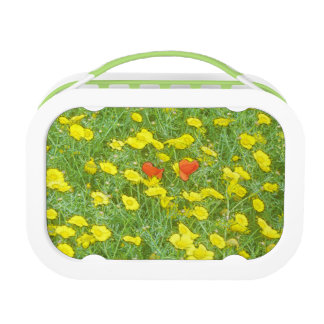Watercolor poppies lunch box