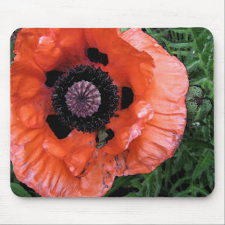 Watercolor Poppy Mouse Pad