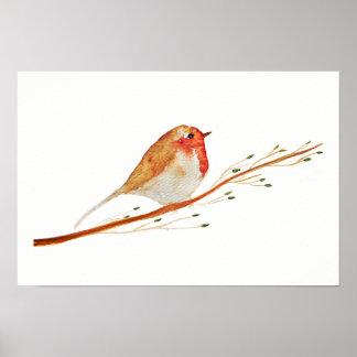 Watercolor Robin Bird Poster