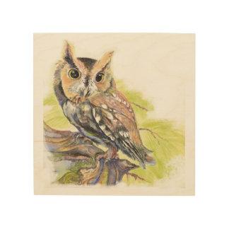 Watercolor Screech Owl Bird Animal Nature Art Wood Canvases