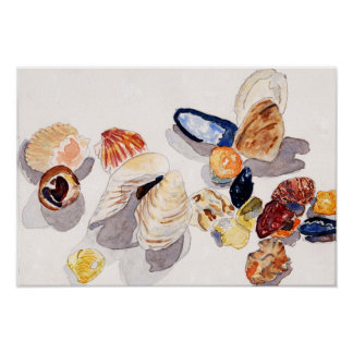 Watercolor Seashell Poster