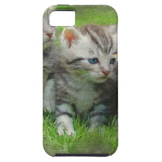 Watercolor Style Kettens Cats Case For The iPhone 5