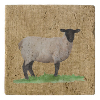 Watercolor Suffolk Sheep Trivet