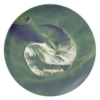 Waterdrop Plate
