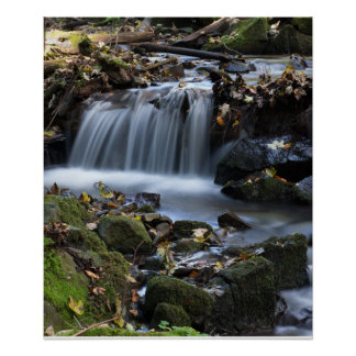 Waterfall among the weeds poster