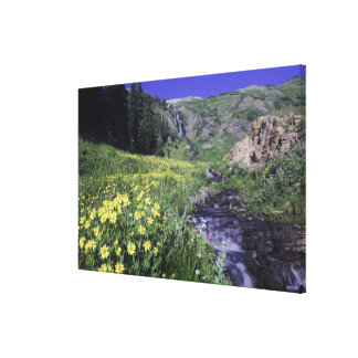 Waterfall and wildflowers in alpine meadow, canvas prints