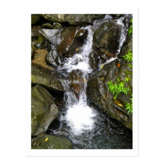 Waterfall at El Yunque National Rainforest Postcard