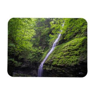Waterfall at Watkins Glen, NY Magnet