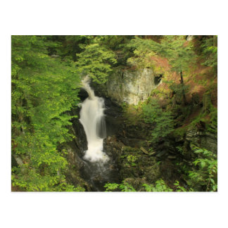 Waterfall at Windsor Jambs Berkshires Postcard