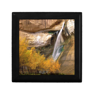 Waterfall Calf Grand Escalante Monument Utah Gift Box