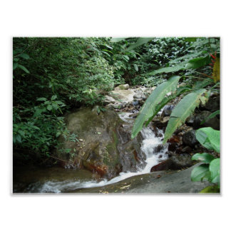 Waterfall in Costa Rica Poster