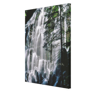Waterfall in forest, Oregon Canvas Print